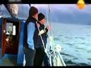 Морские Сирены Могут Спасти Человека,а могут и навредить . Тайна Человека Амфибии