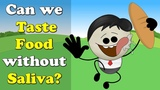 Can we Taste Food without Saliva #aumsum #kids #education
