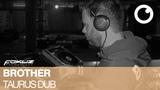 Brother - Taurus Dub Fokuzlp023