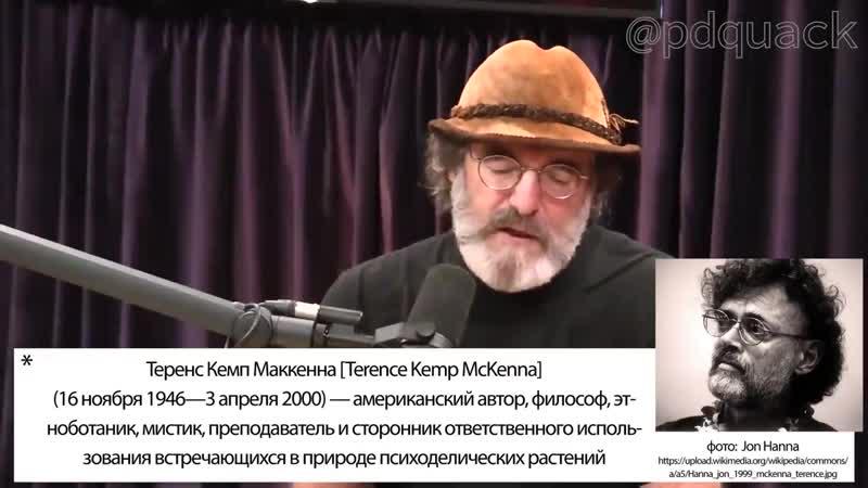 Пол Стеметс - Гипотеза упоротой обезьяны
