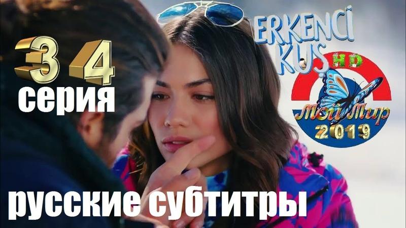 Ранняя пташка 34 серия русские субтитры