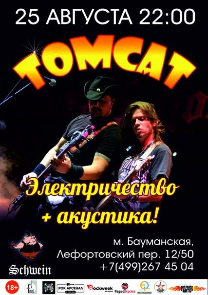 TomCat электричествоакустика in Schwein