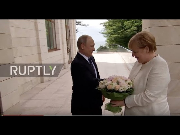 Russia: Putin greets Merkel with white rose bouquet in Sochi