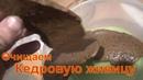 Очищаем кедровую живицу кедровая смола Жевательная резинка жвачка серка сера терпентиновая живица