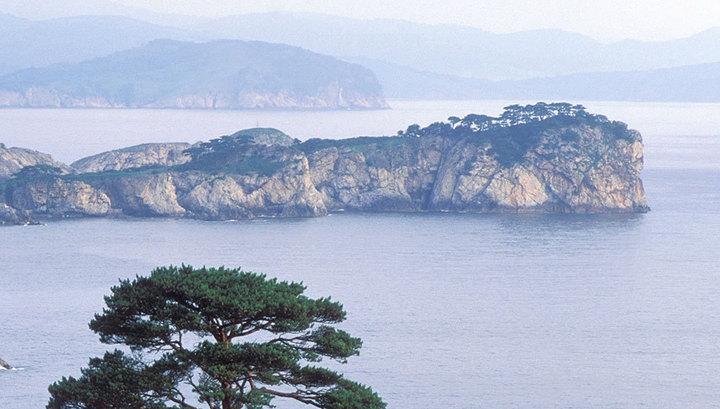 Вести.Ru: В Японском море начали поднимать русский крейсер, груженный золотом
