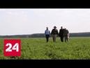 Приключения африканцев в России Специальный репортаж Артема Ямщикова Россия 24