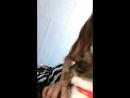Я и моя котейка Хассим