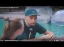 Интервью: B-boy InTact (Ruffneck Attack)