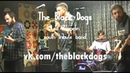 The Black Dogs (Led Zeppelin tribute band) 2019 promo
