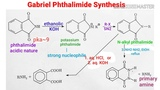 #Animation Gabriel Phthalimide Synthesis mechanism, synthesis of primary amine, scope &amp application