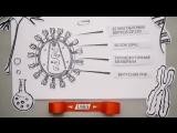 ВИЧ-инфекция- история борьбы за право на жизнь