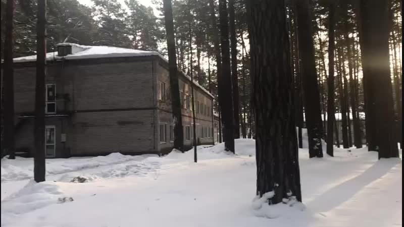 лагерь чудо лесье