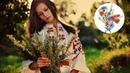 Горіла сосна, палала - Гарна українська пісня! Українські пісні
