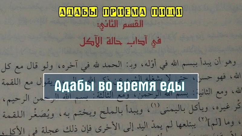 адаб еда ислам религия ихяъ; Адабы во время еды (часть-1). Шамиль Османов.