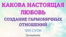 НАСТОЯЩАЯ ЛЮБОВЬ В ОТНОШЕНИЯХ ~ Тил Суон TsovkaMedia