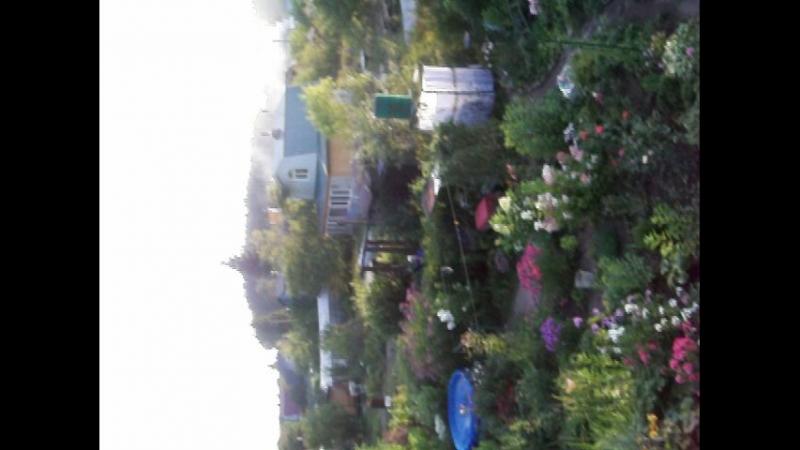 На крыше дома своего.