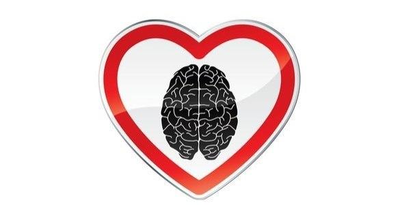 Мозг любит
