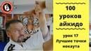 100 уроков айкидо с Игорем Дмитриевым. Лучшие точки нокаута. Точка ST 9