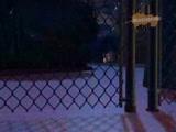 Приключения Джимми Нейтрона, мальчика-гения - 14 серия.
