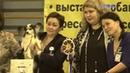 Выставка собак Русский север Бест ветеранов