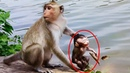 Why kidnapper drags baby Chikis non stop doing very awful acts  pity poor tiny baby part 2,210