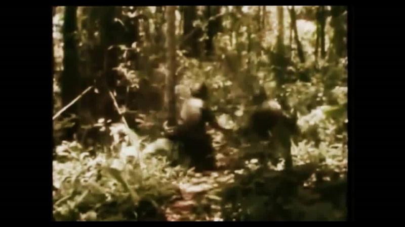 SODOM - M16 (MUSIC VIDEO) HD