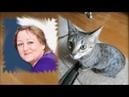 Наши друзья - коты и кошки )) Живность 2 КМИ 1987