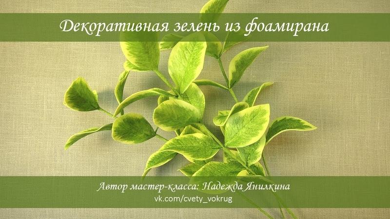 Декоративная зелень из фоамирана мастер-класс