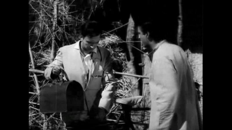 Во имя любви. Индия. 1961 г.