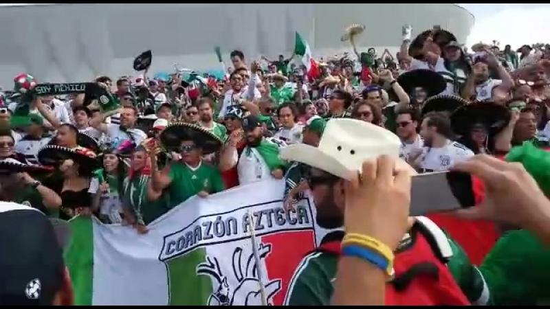Мексиканское безумие в Ростове.