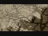 Delerium - Silence feat. (Sarah McLachlan)