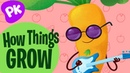 How Things Grow! I Love to Learn: PlayKids Music for Kids, Preschool Kindergarten Funny Kids Songs