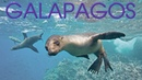 Top 8 Best Places To Visit In The Galapagos