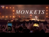 Arctic Monkeys — Live at TRNSMT Festival 2018