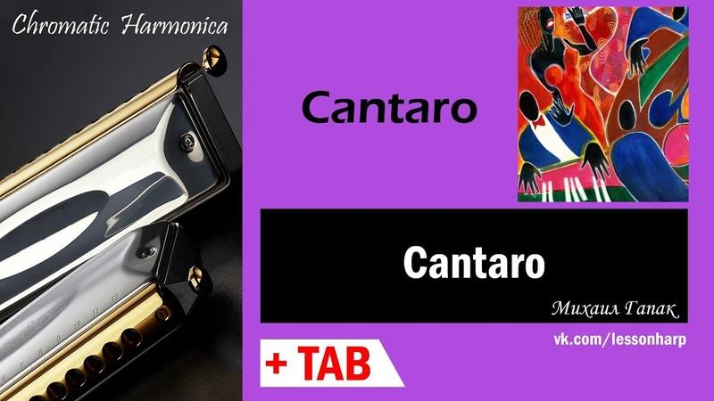 Cantaro - Harmonica TAB - Михаил Гапак - Hohner CX12 Jazz