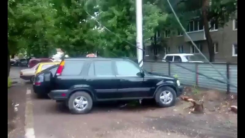 Саратовские спасатели распилили упавшее дерево на Большой Садовой