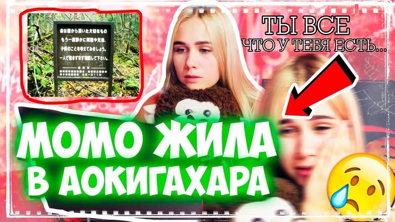 Что скрывает лес АОКИГАХАРА ГДЕ ЖИЛА МОМО? ГУГЛЮ МИСТИЧЕСКИЙ ЛЕС В ЯПОНИИ И ЕЕ СЫНА ЛОРЕНЗА!