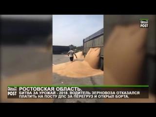 Водитель зерновоза отказался платить штраф на посту ДПС за перегруз и высыпал зерно на асфальт.