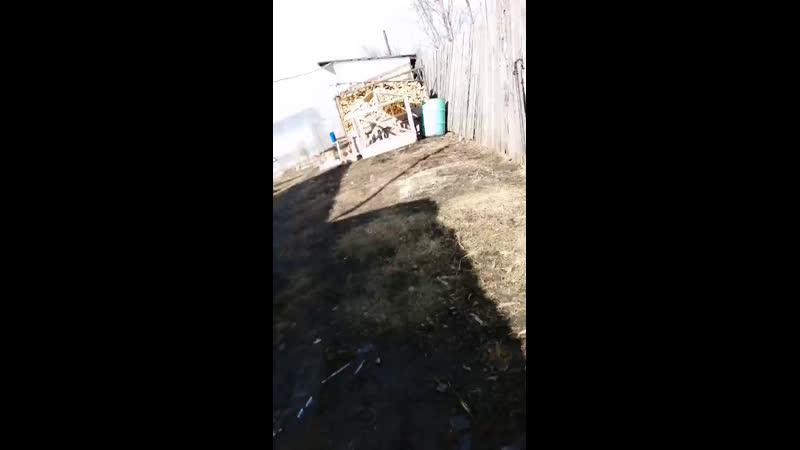 Live Каманда Плюшка