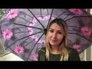 Надежные и качественные зонты в магазинах КОФРЪ