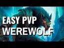 EASY Werewolf PVP Build ESO Wrathstone Murkmire