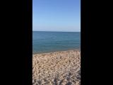 Утром на море в Любимовке