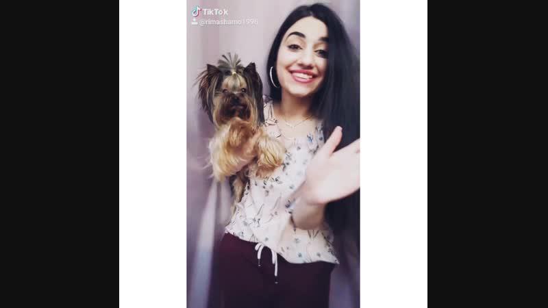 Rima Shamo My Dog Richi - New Challenge, Funny ))