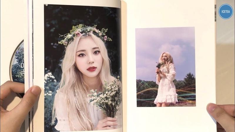 [UNBOXING | ALL VER. | 후기] LOONA 이달의 소녀 - (Plus Plus) (No.18 Album)
