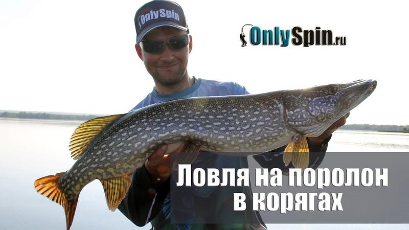 Сильные стороны поролоновых рыбок Ловля в корягах OnlySpin