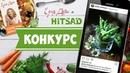 КОНКУРС от интернет магазина HITSAD,RU и проекта ЕДИМ ДОМА