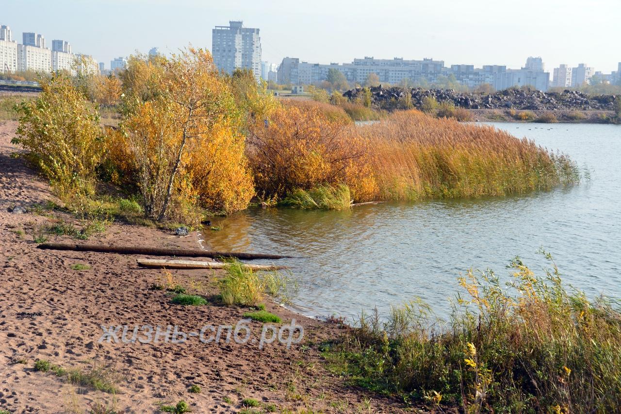 Озеро в устье реки Смоленки около порта. Осенний пейзаж города. Живопистые и роматнические места нетуристического Питера