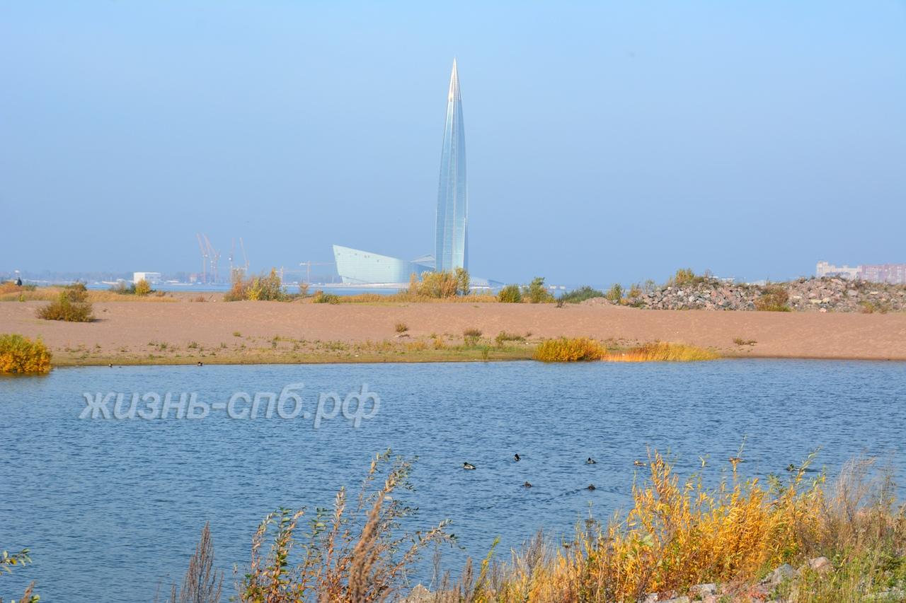 Необычный вид на Лахта центр - башню Газпрома Петербурга и озеро