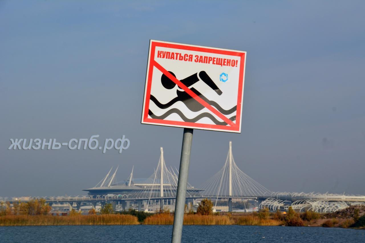 Купаться запрещено - знак  у порта и вид на городскую спортивную арену Петербурга
