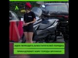 Девушки-полицейские переоделись в шортики | АКУЛА